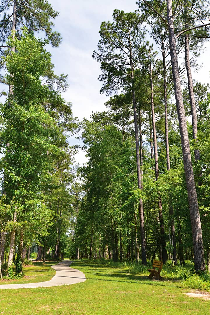 Community nature walking trails located throughout the residential neighborhoods of Carolina Colours private community